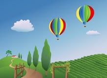Ballons over een Wijngaard Stock Afbeelding