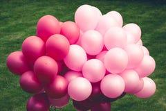 Ballons pourprés sur le vert image libre de droits