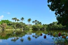 Ballons sur l'eau avec des palmiers Photographie stock libre de droits