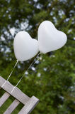 Ballons. White balloons on a park bench royalty free stock photo