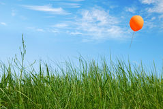 Balloon. On blue sky background Royalty Free Stock Photography