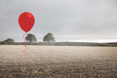 Balloon above a field Royalty Free Stock Photos