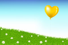 Balloon Above Grass Hill. Vector. Heart Shape Balloon Like As Sun Above Grass Hill With White Daisies Stock Image