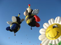 Balloon Bees. In flight with flower Stock Photos