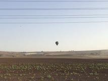 A Balloon And A Bird. Landing balloon, bird on the left Royalty Free Stock Photos