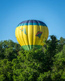 Balloon in the Bush Royalty Free Stock Photography