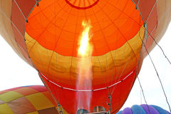 Balloon festival. The compressed gas in a balloon ,balloon festival Stock Photos