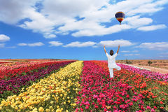 Balloon flies over a field Royalty Free Stock Photo