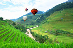 Balloon float in the rice fields on terraced of Mu Cang Chai, YenBai, Vietnam. royalty free stock photos