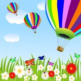 Balloon and floral glade Royalty Free Stock Photo