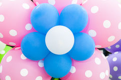 Balloon   flowers Royalty Free Stock Images