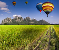 Balloon fly on Green Terraced Rice Field Royalty Free Stock Image