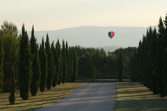 Balloon flying over the Provençal cypres near Lacoste in the Va Royalty Free Stock Images