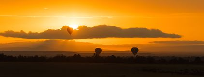 Balloon rides at dawn in the Masai Mara. Stock Photography