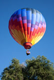 Balloon Over Tree Royalty Free Stock Images