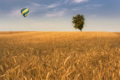 Balloon over wheatfield Royalty Free Stock Photos