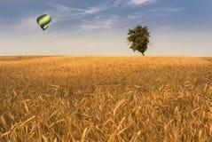 Balloon over wheatfield Royalty Free Stock Photos
