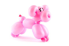 Balloon pig Royalty Free Stock Photo
