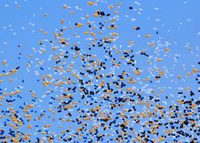 Balloon release. (concept = party, celebrate, etc stock photography