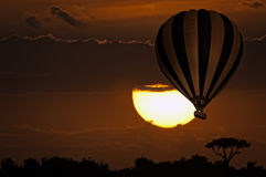 Balloon safari , sunrise Stock Photo