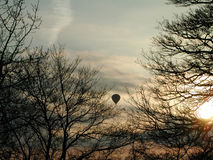 Balloon between trees. Hot air balloon framed by winter trees Royalty Free Stock Photos