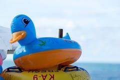 BalloonDuck 免版税图库摄影