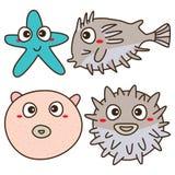 Balloonfish cute Stock Image