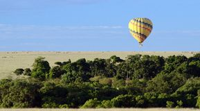 Ballooning η σαβάνα Στοκ Εικόνα
