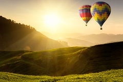 Ballooning. Flying over the tea plantation stock photo