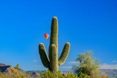 Ballooning sopra il deserto del Sonoran dell'Arizona Immagine Stock