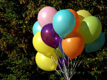 Balloons. Close up of colorful balloons on green foliage Royalty Free Stock Photography