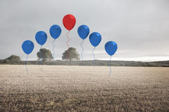 Balloons above a field Royalty Free Stock Images