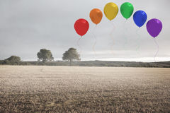 Balloons above a field Royalty Free Stock Image