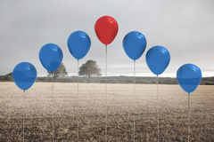 Balloons above a field Royalty Free Stock Photography