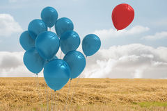Balloons above a field Royalty Free Stock Photo