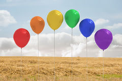 Balloons above a field Royalty Free Stock Photos