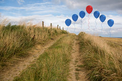 Balloons above sand dunes Royalty Free Stock Photo