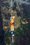 Balloons as targets on water. Balloons in shooting range as targets on water Stock Image