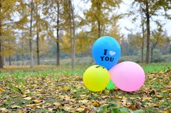 Love Balloons   in autumn Stock Image