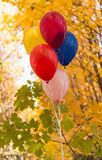 Balloons on a background of autumn leaves Stock Photos