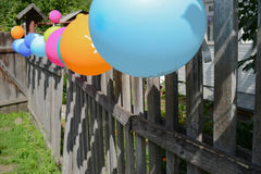 Balloons on a fence. Colorful balloons on a wooden fence Royalty Free Stock Photography