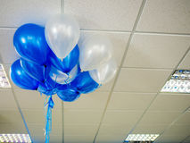 Balloons floating on office ceiling. Work celebration concept background Royalty Free Stock Image