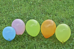 Balloons on the grass Royalty Free Stock Photo