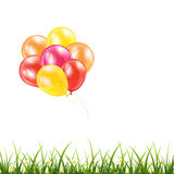 Balloons and grass Royalty Free Stock Image