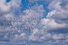 balloons il bianco del cielo Immagini Stock Libere da Diritti