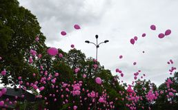 Balloons. A lot of pink balloons Royalty Free Stock Photo