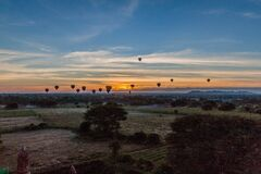 Balloons over Bagan and the skyline of its temples, Myanm