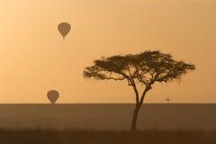 Balloons over the masai mara. Hot air Balloon safari over the Masai mara Royalty Free Stock Image