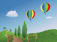 Balloons over a Vineyard Stock Image