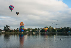 Balloons over Waikato Stock Photography